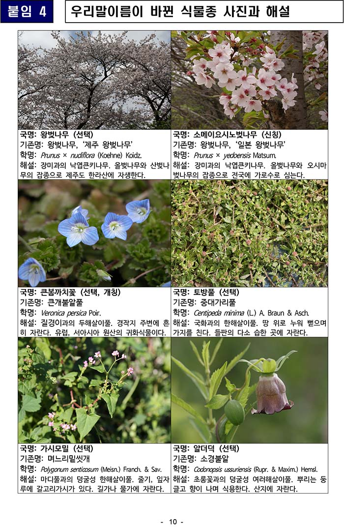 보도자료_동북아생물다양성연구00000000소000-10.jpg