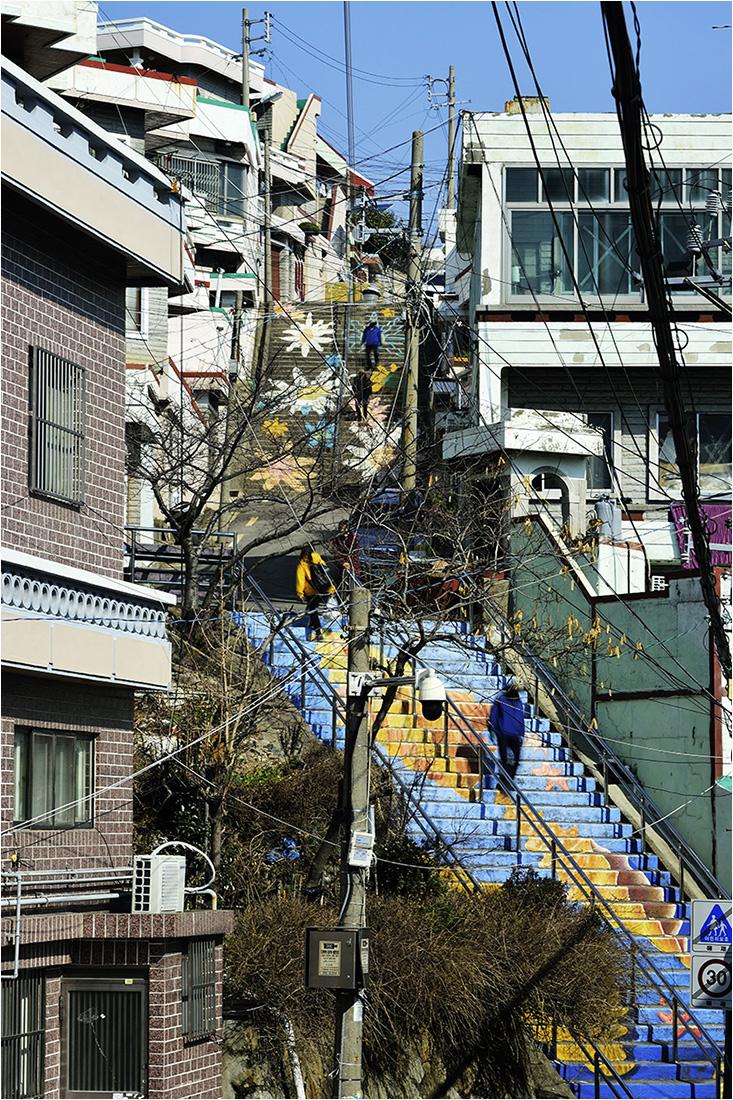 남구신문2003-2jj.jpg