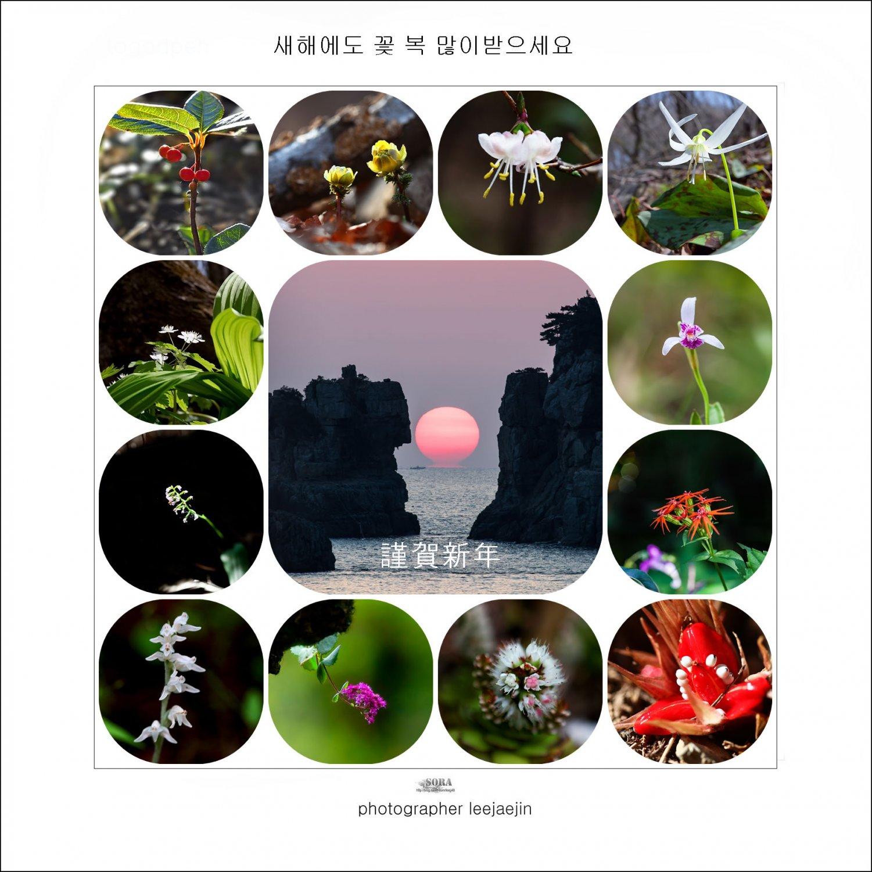 2020년 꽃가족 근하신년메세지.jpg