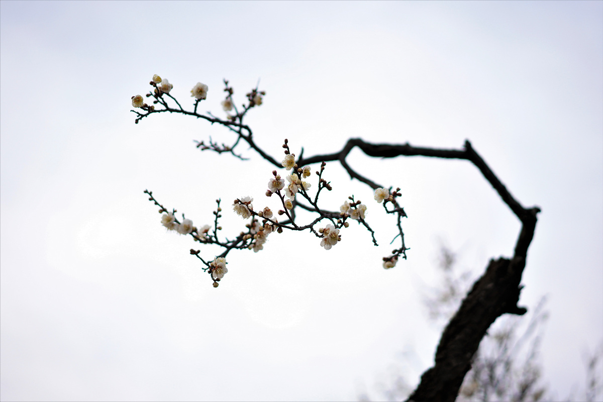 꾸미기_DSC05929.jpg